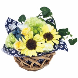 Basket Flower